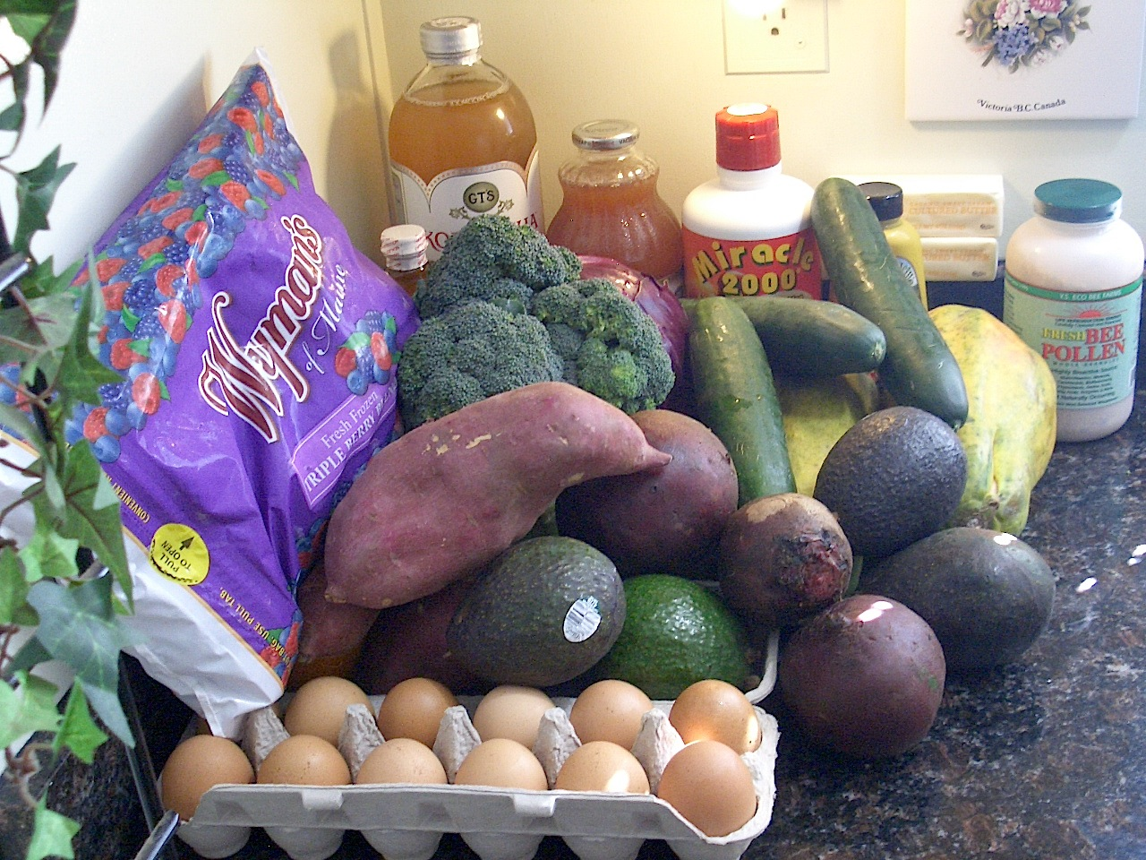 Photo of a Paleo diet - fresh organic pasture-raised eggs, avocados, yam, beets, broccoli, red cabbage, cucumber, papaya, blueberries, blackberries, raspberries, bee pollen, kombucha, and liquid acidophlus and Miracle 2000
