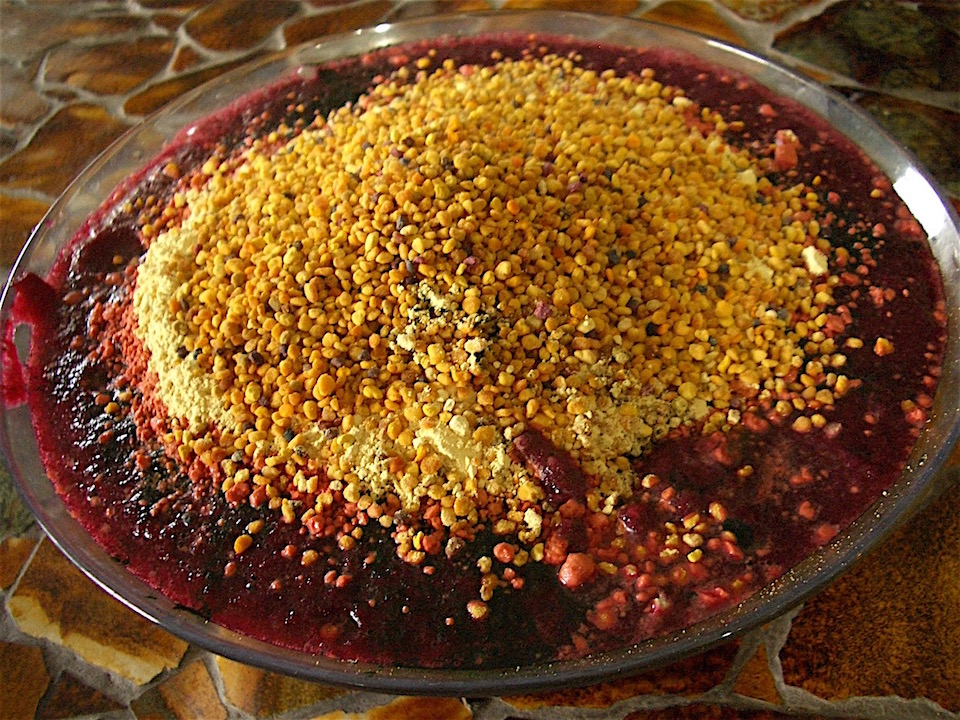 Paleo meal in a Bowl - bee pollen, pine pollen, and chlorella, with blended blackberries, blueberries, ginger root, lettuce, beet, red cabbage, red onion, and kombucha covering one whole sliced and mashed avocado